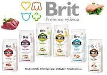 Brit Fresh (Чехия)