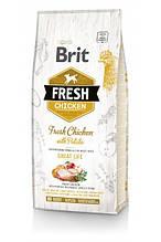 Brit Fresh Chicken with Potato Adult Great Life для взрослых собак всех пород (курица) 12 кг