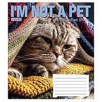 """Тетрадь 12 листов 1Везесня """"Cute Animals"""" клетка 763907"""
