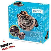 Надувной пляжный  матрас для плавания  Intex Пес  58784