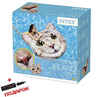 Пляжный надувной матрас для плавания Intex Кот 58785