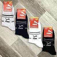 Носки мужские спортивные х/б с сеткой Puma, 41-44 размер, средние, ассорти, 640