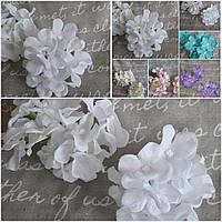 Белое соцветие гортензии, голова диам.10-11см., цветок диам.5см., 12/10 (цена за 1 шт. +2гр)