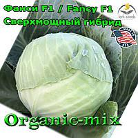Сверхмощный гибрид среднеспелой капусты Фанси F1 / Fancy F1, 2500 семян, Lark seeds (США)