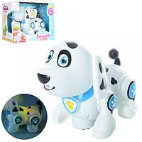 Собака 696-25, 20см, ездит, муз, звук, свет, на бат-ке, в кор-ке, 25, 5-19-13см