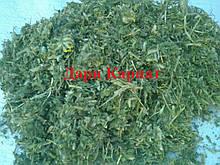 100г., Астрагал шерстистоквітковий 2020 (трава)