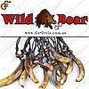 """Прикраса на шию Ікла Кабана - """"Wild Boar"""" - оберіг від пристріту"""