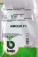 Огірок  «Амур» F1  1000  н Bejo  (Бейо)