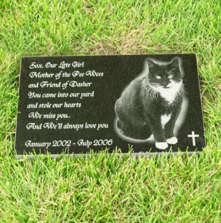 Пам'ятник табличка для кішки із граніту на могилу