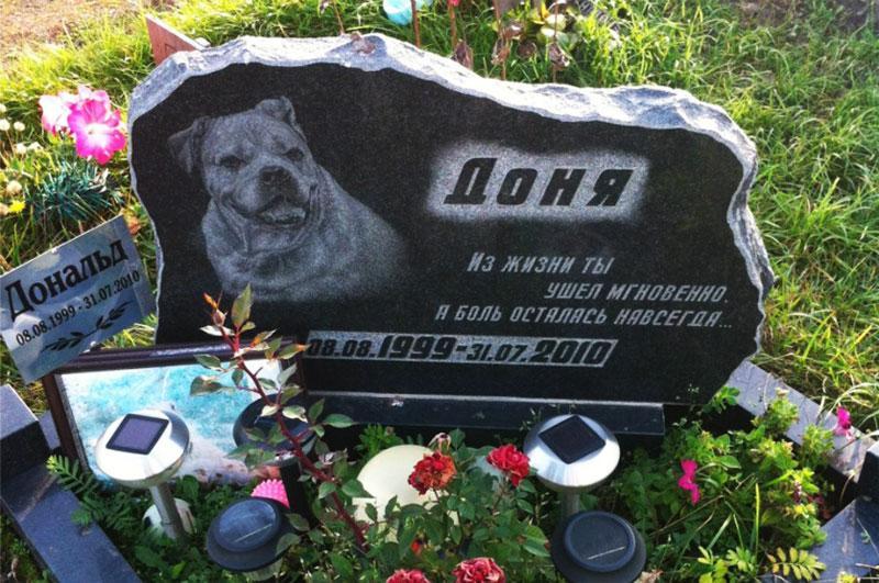 Надгробний памятник для домашньої собаки із граніту на могилу