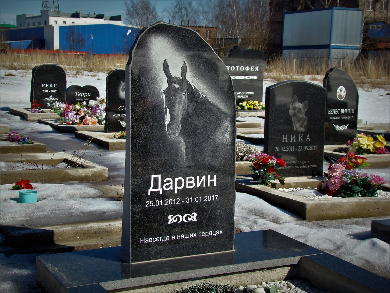 Памятник для коня на могилу