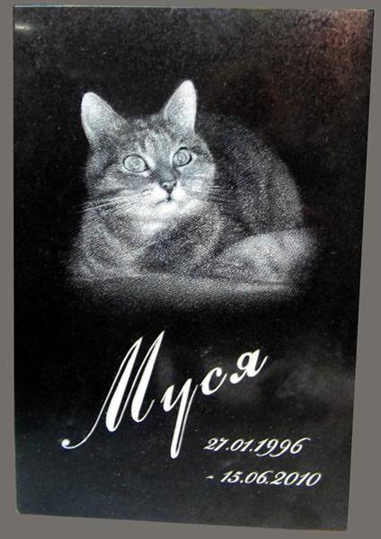 Памятник табличка для кота на могилу із граніту