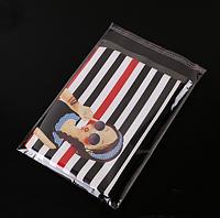 Пакеты полипропиленовые с клеевым клапаном 22 х 24 см /уп100шт, фото 1