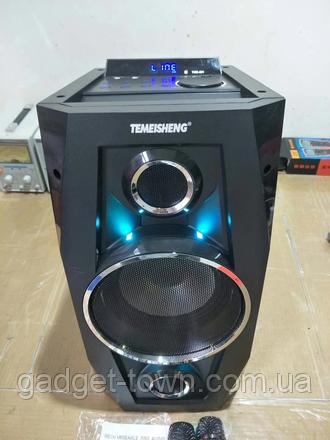 Акустика акумуляторна з бездротовими мікрофонами TMS-801 / 100W (USB/FM/Bluetooth)