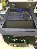 Акустика акумуляторна з бездротовими мікрофонами TMS-801 / 100W (USB/FM/Bluetooth), фото 3