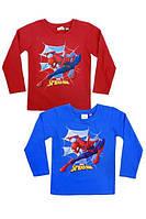 Реглан для хлопчиків Spiderman 92-116 р. р.