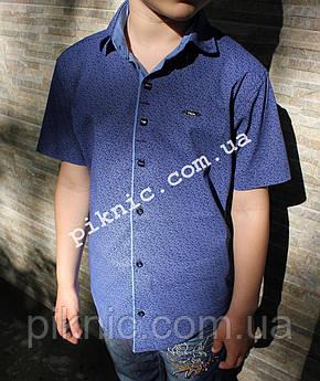 Рубашка школьная для мальчиков 7, 8, 9, 10, 11, 12, 13 лет. Короткий рукав, детская, Турция. Синий, фото 2