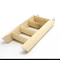 Качественные игрушки для хомяков - 1TopShop, фото 2