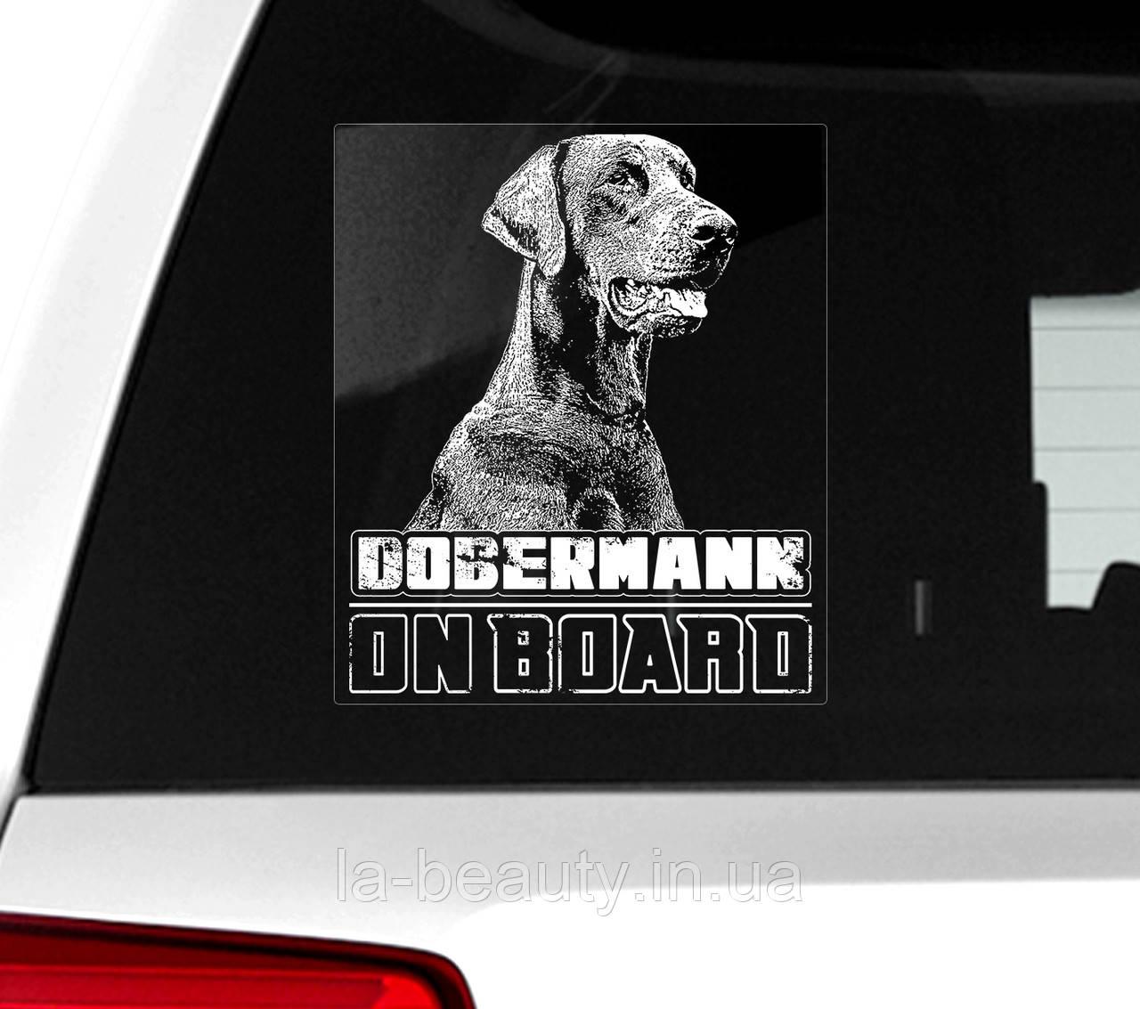Автомобильная наклейка Доберман на борту-2 (с некупированными ушами)