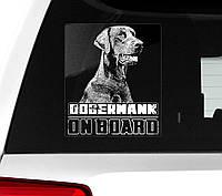 Автомобильная наклейка Доберман на борту-2 (с некупированными ушами), фото 1