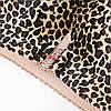 Передняя застежка Беспроводная леопардовая печать Strappy Назад Бра - 1TopShop, фото 5