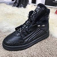 Мужские кроссовки Philipp Plein Hi Top Sneakers Core Black