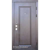 Двери входные в квартиру Steelguard  DP-1