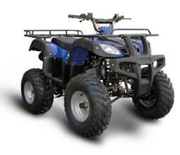 Квадроцикл SPARK SP250-4 (черный, синий)
