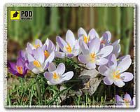 Коврик Весна-Крокусы