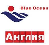 Фланцы бурты Blue Ocean