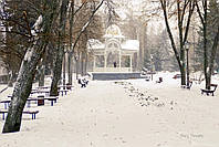 Фотокартина на холсте Зимняя Альтанка в Сумах  50х70 см