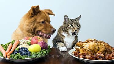 Описание ингредиентов в кормах для кошек и собак