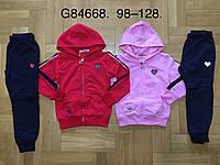 Трикотажный костюм 2 в 1 для девочек оптом, Grace, 98-128 см,  № G84668, фото 1