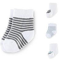 Махровые носочки Tchibo для новорожденных!