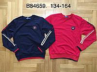 Реглан для мальчиков оптом, Grace, 134-164 см,  № B84659, фото 1