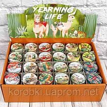 Продажа кратно 12 шт! Подарочная коробка жестяная ЛАМА 412-39 (0804). МИКС картинок