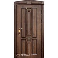 Двери входные в дом Steelguard SG-15