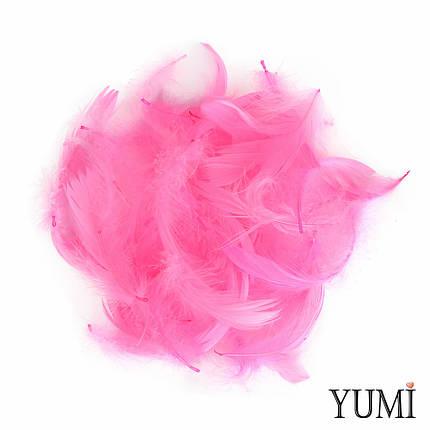 Набор: перья на бабл / Bubble розовые, 12г, фото 2