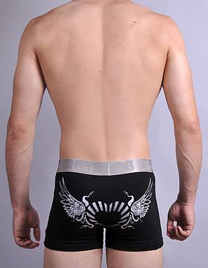 Мужские трусы - боксеры C+3 M \ L \ XL \ XXL \, фото 2