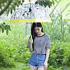 Парасолька Remax transparent Umbrella RT-U5, фото 2