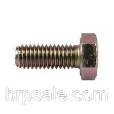 Шестигранный винт M8 X 20 Can-Am BRP SCREW-HEX.CAP DIN.933