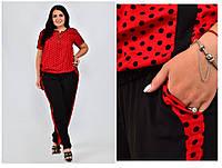 Женские летние костюмы, элегантная блуза и брюки батал, фото 1