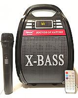 Портативная Акустическая система GOLON RX-810 BT Колонка-комбоусилитель Bluetooth + MP3, радиомикрофон, пульт,