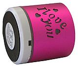 Портативная Аккумуляторная MP3 Колонка Speaker Small - S 08U Love  , фото 3