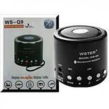 Портативная колонка WSTER WS-Q9 (Bluetooth) FM USB SDcard , фото 2