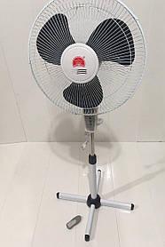 Вентилятор напольный с пультом CHANGLI CROWN FS 1608 R