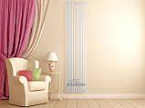 Вертикальный радиатор Quantum 1 1800/405  Betatherm 11-13 м.кв., фото 3