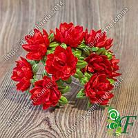 Букетик хризантемы красной