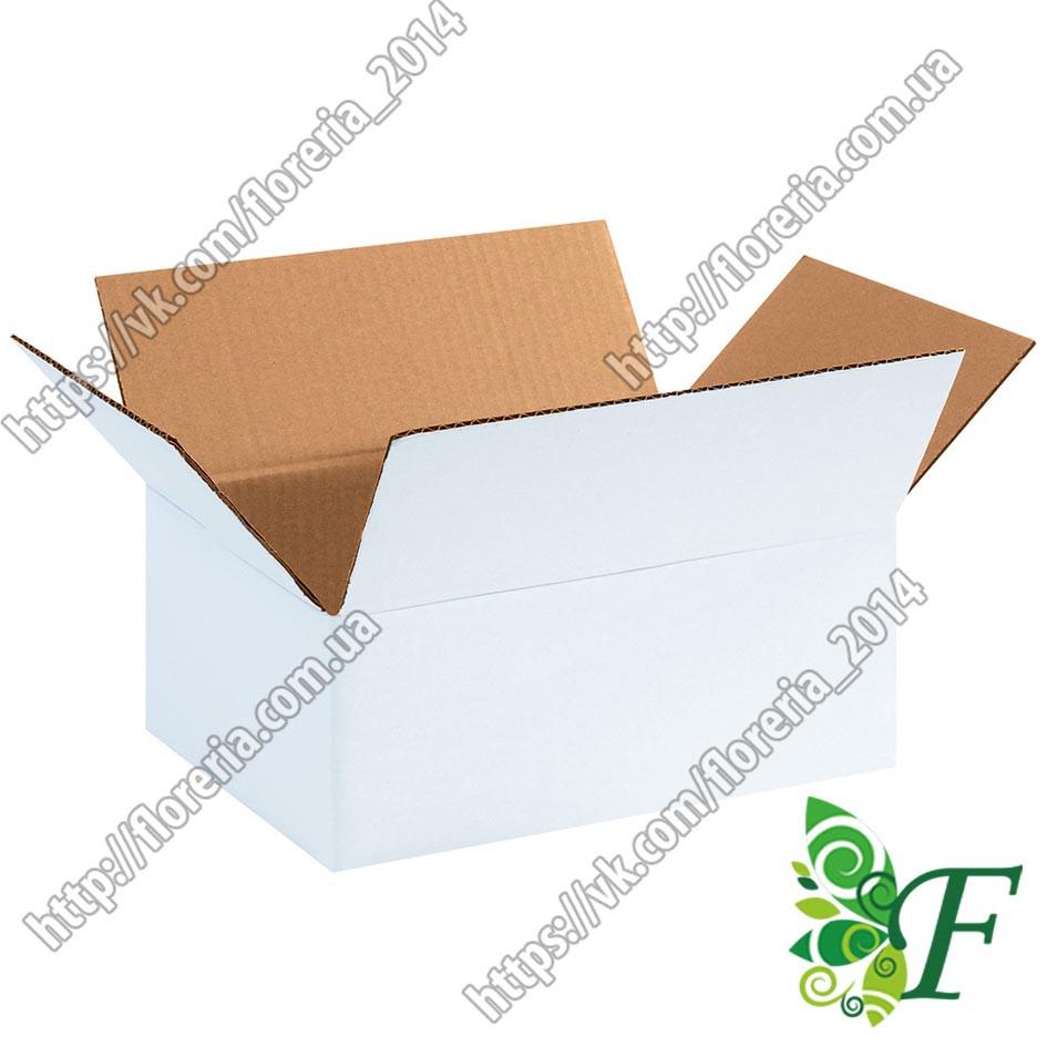 Коробки 21 х 17,5 х 11 см белые 20 шт