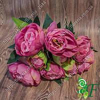 Букет Пионов натуральных_розовые